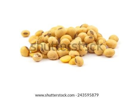 soybean isolated on white background - stock photo