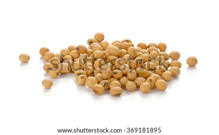 Soybean isolated on white background