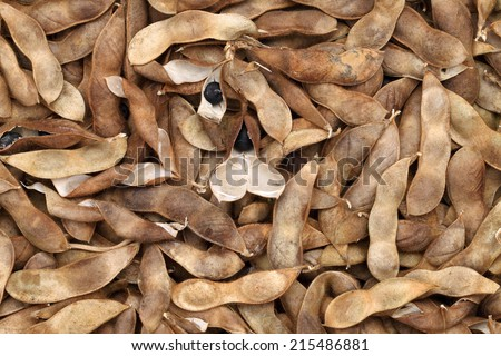 Soybeans pod, harvest of soy beans background - stock photo