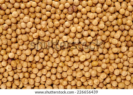Soybeans Surface Texture Top View Close up. Pattern Background - stock photo