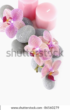 spa and aroma therapy setting-(candle, stones orchid) - stock photo