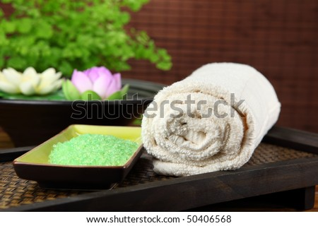 Spa and body care treatment - stock photo