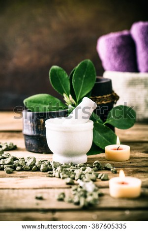 Spa and wellness setting with oils and plants. Dayspa nature products - stock photo