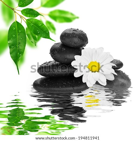 spa Background -  black stones and bamboo on water - stock photo