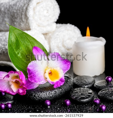 spa background of orchid dendrobium, green leaf Calla lily, candle, towels and beads on zen stones with drops, closeup   - stock photo