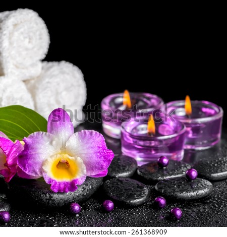 spa background of purple orchid dendrobium, green leaf with drops, towels, candles and pearl beads on black zen stones, closeup   - stock photo