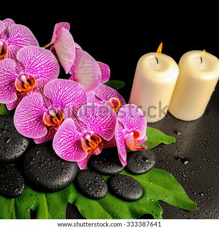 spa background of zen stones with dew, blooming twig stripped violet orchid (phalaenopsis ), stacked towel and candles on green leaf - stock photo