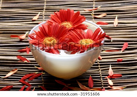 Spa background - red flower with petals in a bowl - stock photo