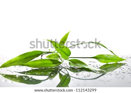Spa Background with Bamboo and Water - stock photo