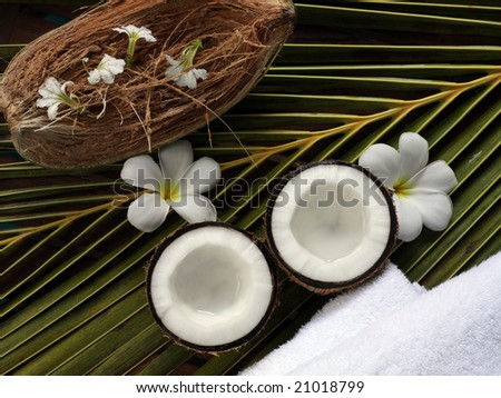 spa beauty objects for body care on palm leave, coconuts, exotic plumeria white flowers, towels, tropical - stock photo