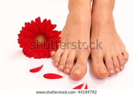 Spa composition of feet and flowers