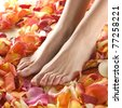 Spa composition of legs and petals - stock photo