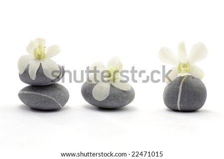 Spa composition of stones and orchid flower