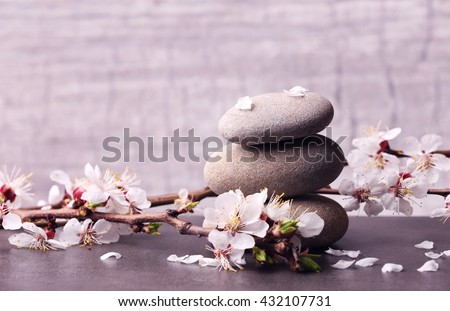 Spa composition with blooming branches on wooden table - stock photo