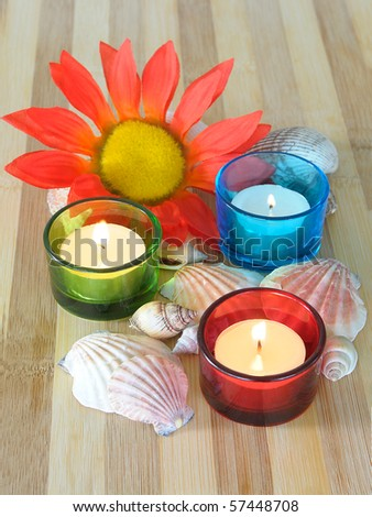 Spa concept candles seashells and flower - stock photo