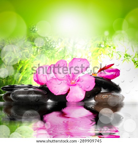 Spa concept. Flower and stones. - stock photo