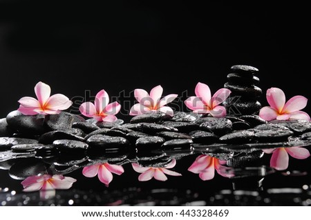 spa concept- frangipani and wet stones   - stock photo