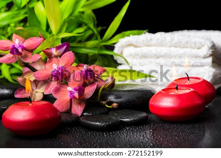 spa concept of blooming twig red orchid flower, phalaenopsis, bamboo with dew, towels and candles on zen basalt stones - stock photo