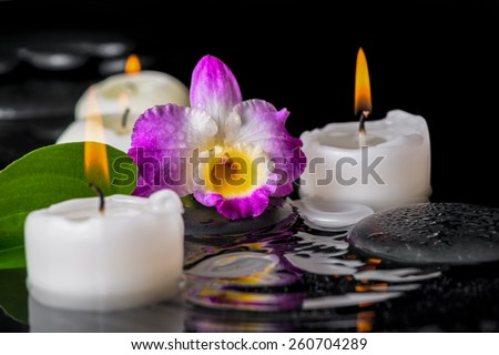 spa concept of purple orchid dendrobium, leaf with dew and candles on zen stones in ripple reflection water - stock photo