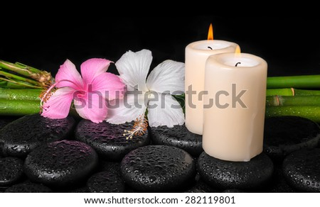 spa concept of zen basalt stones, white and pink hibiscus flower, candles on natural bamboo with drops,  - stock photo