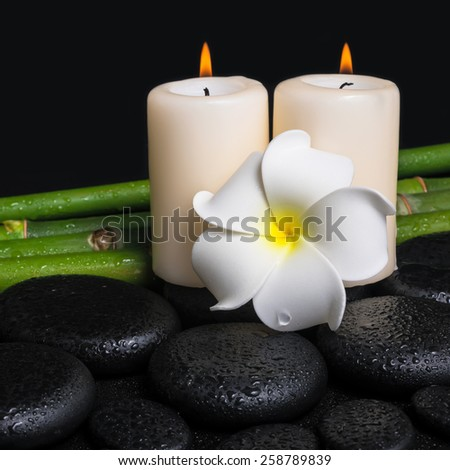 spa concept of zen basalt stones, white flower frangipani, candles and natural bamboo with drops, closeup  - stock photo