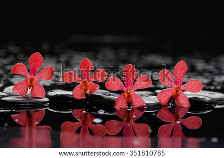spa concept with red orchid,stones - stock photo