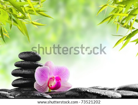 spa concept zen basalt black stones and pink orchid - stock photo