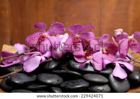 spa concept zen basalt stones and branch orchid - stock photo