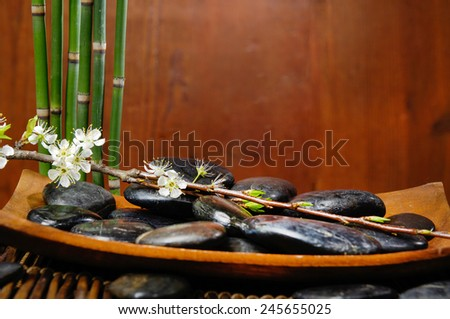 spa concept zen basalt stones in bowl mat with branch of cherry and bamboo grove  - stock photo