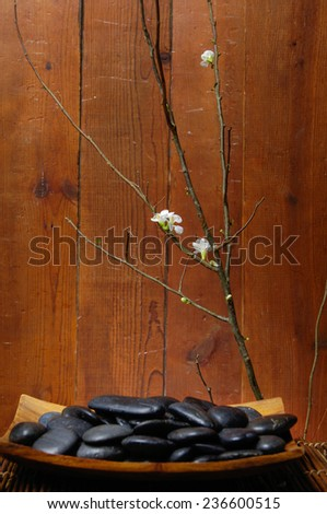 spa concept zen basalt stones on bowl, branch of cherry blossoms - stock photo