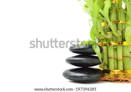 Spa concept zen basalt stones with bamboo - stock photo