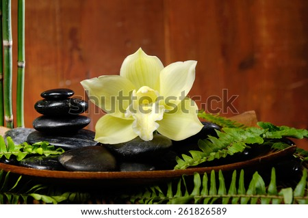 spa concept zen basalt stones with orchid on bowl, bamboo grove,plant  - stock photo
