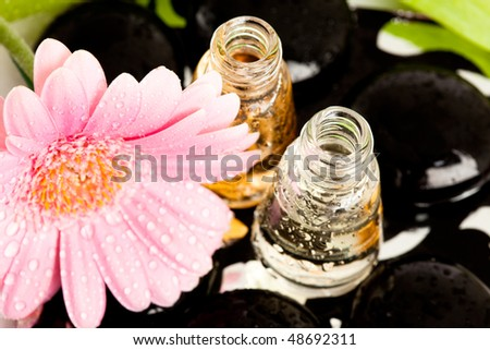 Spa essentials (stones with flower and bottles of oil) - stock photo