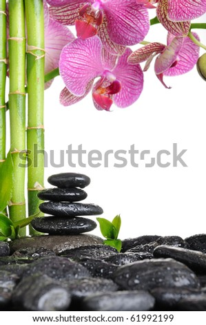 spa frame from bamboo grove, pink orchid and black zen stones on the white background - stock photo