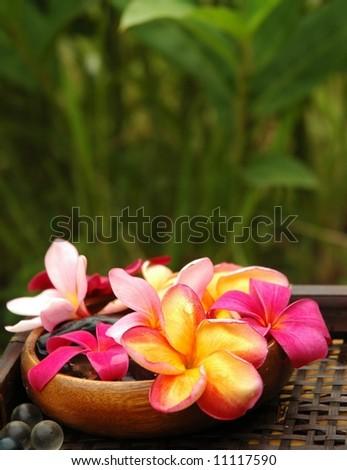 Spa in the garden - stock photo