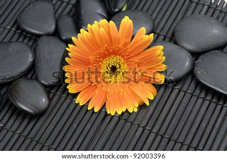 Spa life setting- gerbera with zen stones on mat