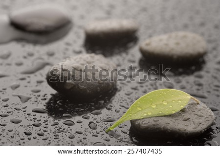 Spa massage stones with leaves and water drops, close up