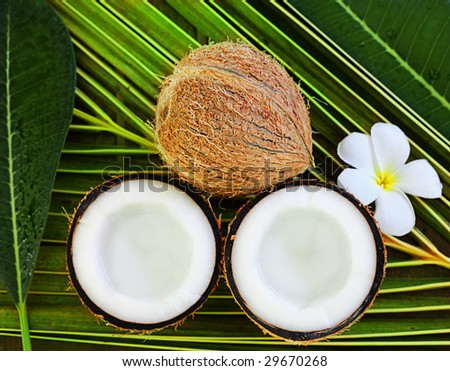 spa objects coconuts flowers  on palm leaf - stock photo