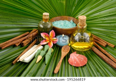Spa set with frangipani,spa oil , salt in bowl ,candle ,spoon on wet palm leaf  - stock photo
