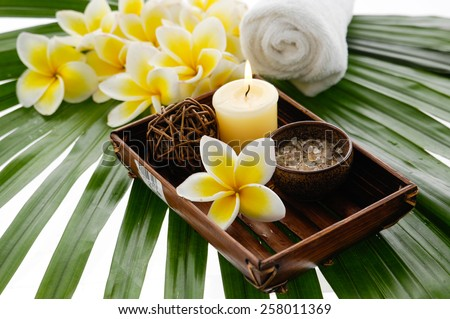 spa setting and green palm  - stock photo