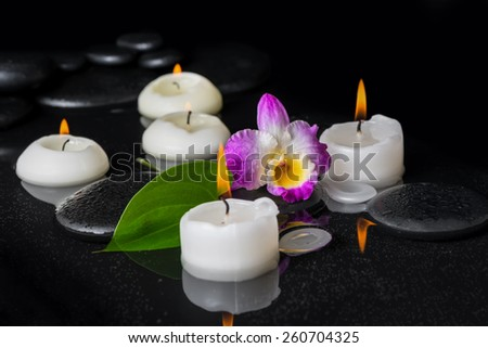 spa setting of purple orchid dendrobium, green leaf with dew and candles on black zen stones in reflection water - stock photo