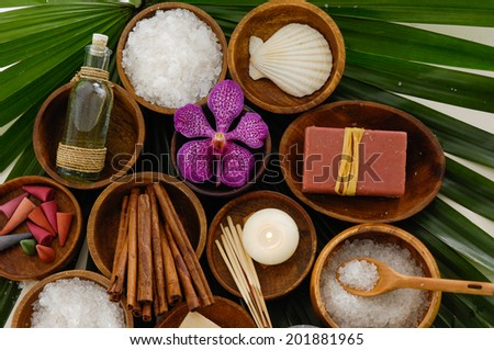 spa setting on green palm - stock photo