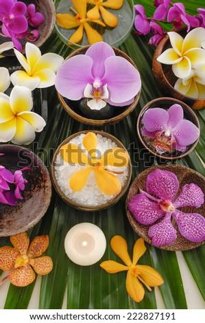Spa setting on green palm leaf - stock photo