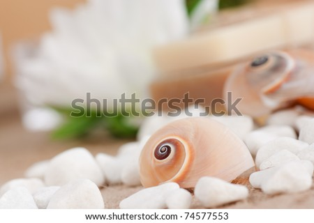 Spa setting with natural soaps and snail shell. - stock photo