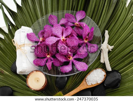 Spa setting with orchid with stones in bowl ,towel on green palm leaf - stock photo