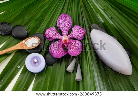 Spa setting with orchid with stones ,salt in spoon on green palm leaf - stock photo