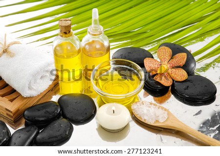 spa setting with palm, towel, salt in spoon, towel - stock photo