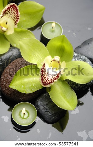 Spa still life and green orchid flower and candle - stock photo