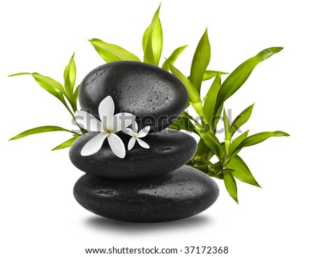 Spa still life on white background - stock photo