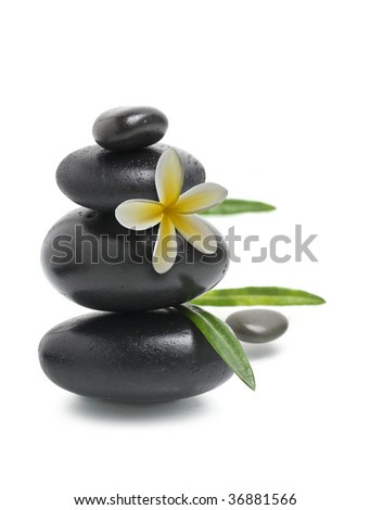Spa still life, Stack of pebbles with yellow flower - stock photo